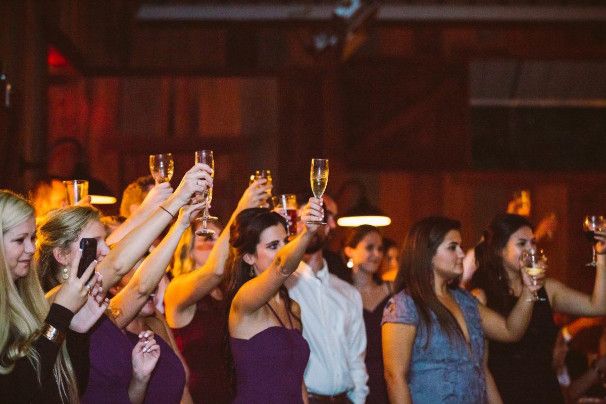 Guests Toasting The Vineyards at Betty's Creek Sylva NC Wedding Photographers