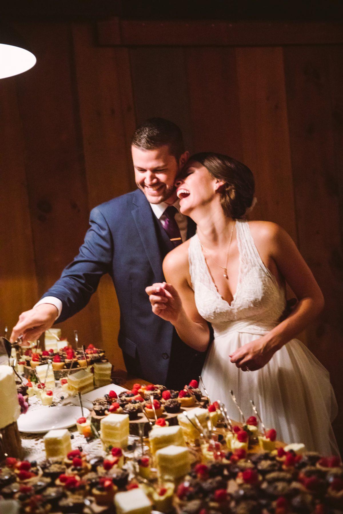 Cake Cutting The Vineyards at Betty's Creek Sylva NC Wedding Photographers