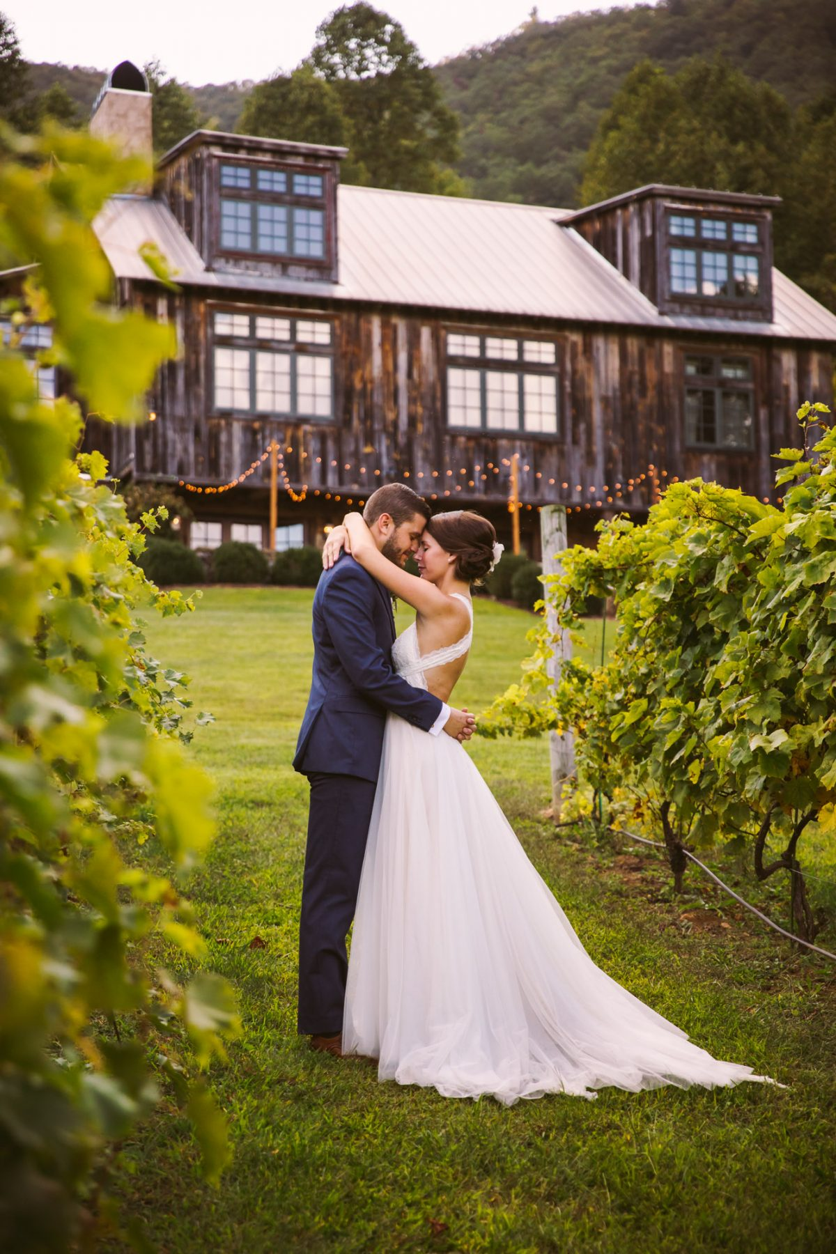 Couples Portrait The Vineyards at Betty's Creek Sylva NC Wedding Photographers
