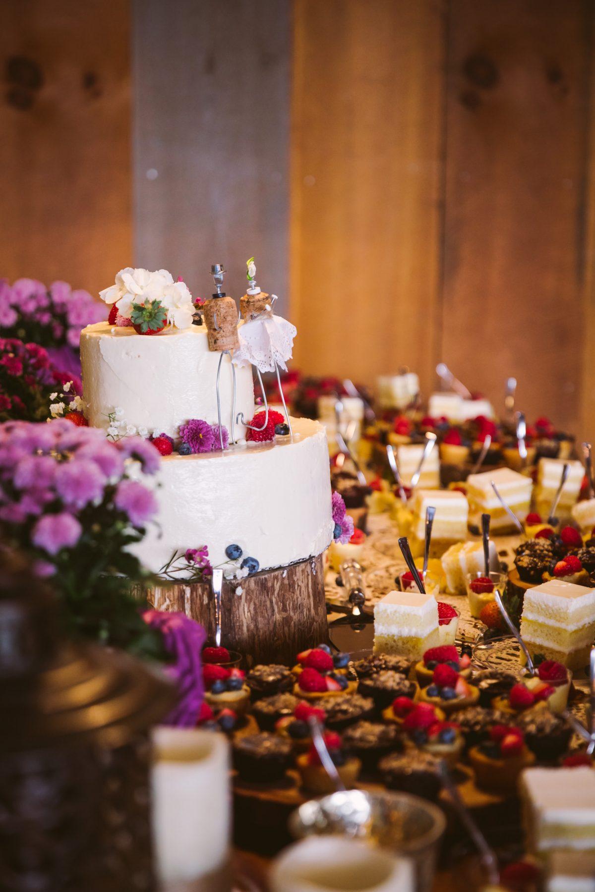 Cake Photo The Vineyards at Betty's Creek Sylva NC Wedding Photographers