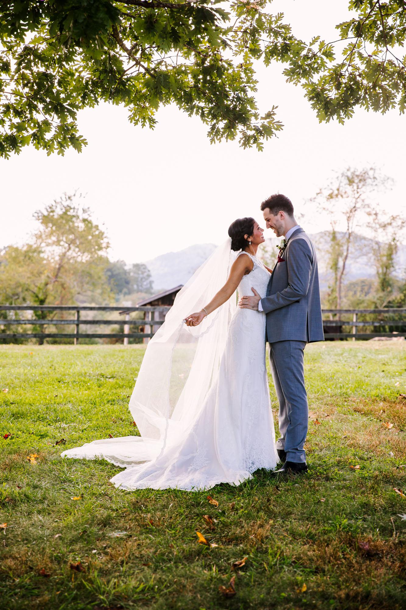 Waynesville NC Wedding Photography | Bride and Groom Portrait under the Tree on the Farm