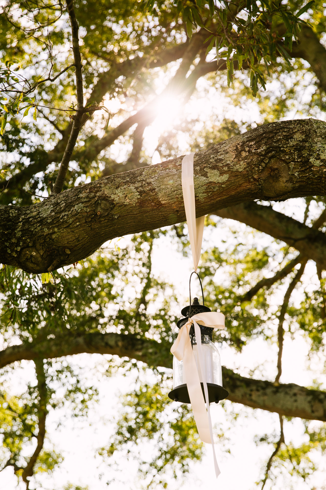 Waynesville, NC Wedding Photography | Wedding Reception Lantern Hanging from Tree