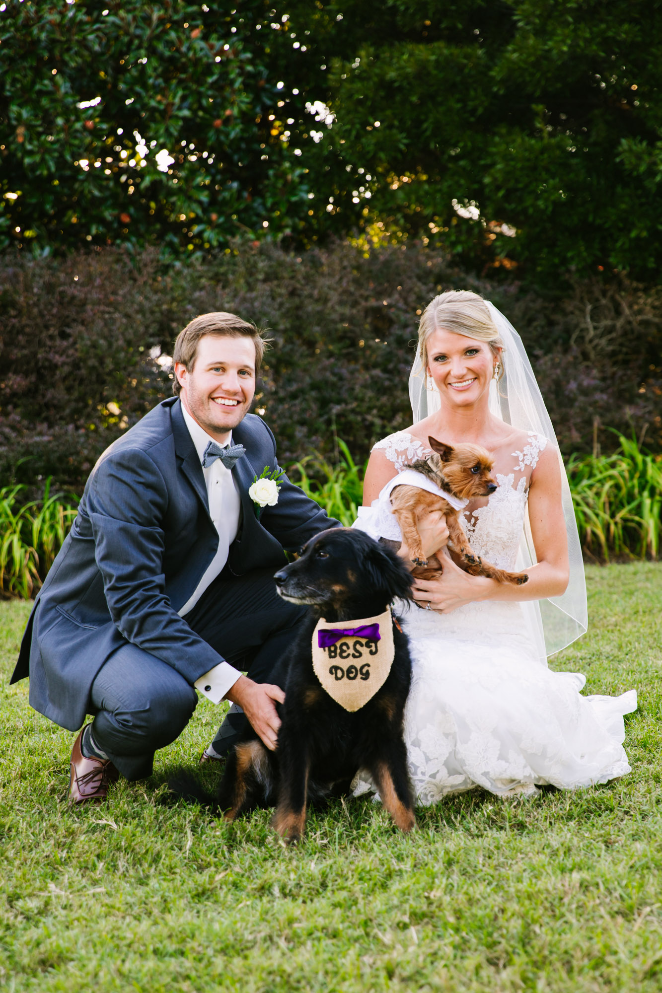 Waynesville, NC Wedding Photography | Bride and Groom with their dogs